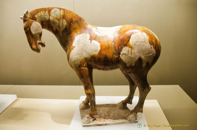 Tang Dynasty Tri-Colour Horse